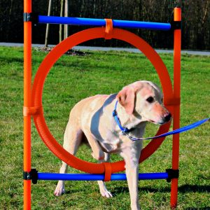 TRIXIE DOG AGILITY RING, ORANGE/BLUE