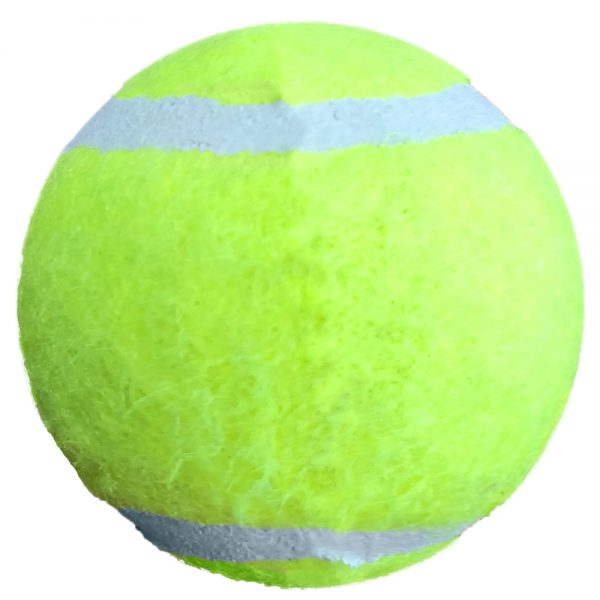 PETSPORT CATNIP BALL 2PK