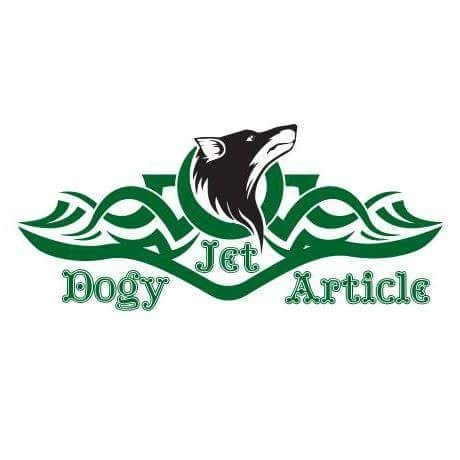 JET DOGGY ARTICLE